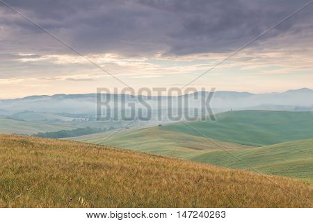 Sunny Morning tuscany nature landscape. Tuscany, Italy, Europe