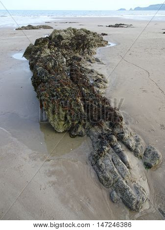 Rockpool seascape photographed at Saunderfoot in Pembrokeshire