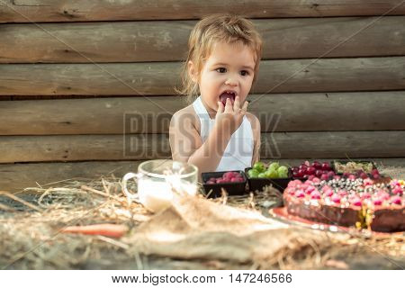 Cute Little Boy Eats Berries