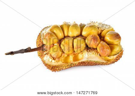 half split ripe cempedak with stem on white background