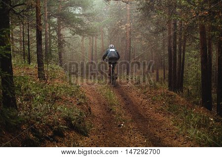 man racer mountain biking autumn forest in fog. race mountain bike