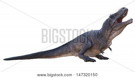 3D rendering of Tyrannosaurus Rex basking in the sun, isolated on white background.