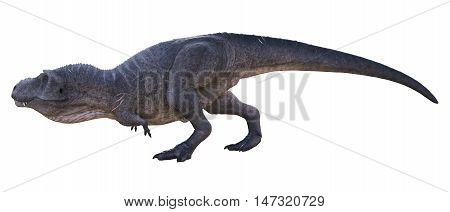 3D rendering of Tyrannosaurus Rex stalking, isolated on white background.