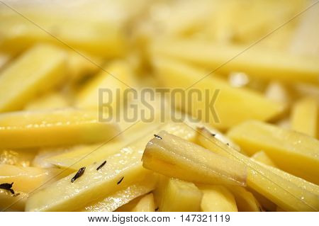 French fries in close up
