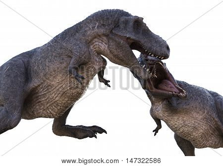 3D rendering of Tyrannosaurus Rex fighting another one for territory or mating rights.