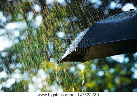 Rain close up of umbrella in the rain with copy space