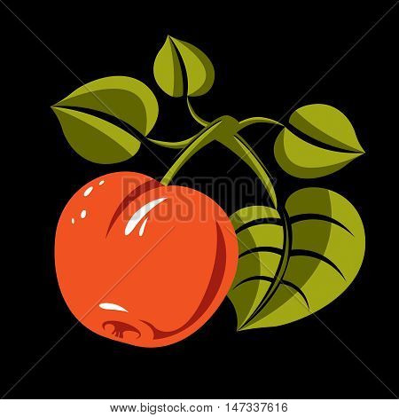 Vegetarian organic food simple illustration vector ripe orange peach with green leaves isolated. Whole fruit fruitfulness idea symbol.