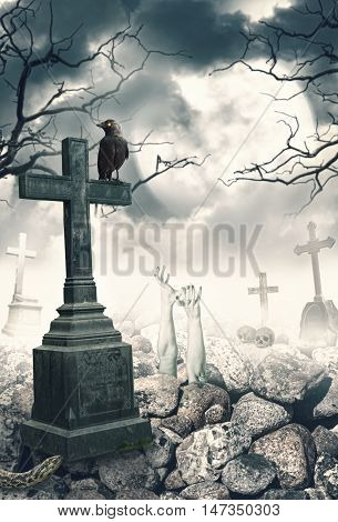 Halloween Mystical Spooky Background With Raven And Cross