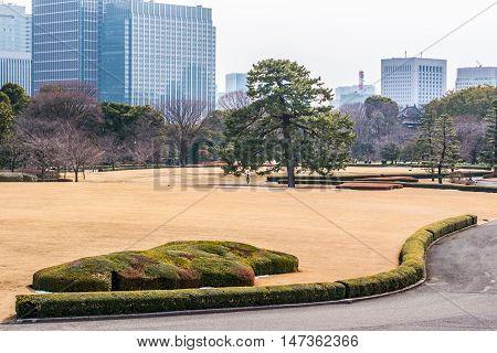 The Emperor gardens in Winter Tokyo, Japan