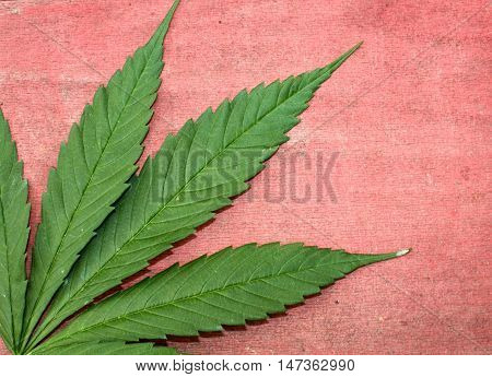 Green and red ganja natural horizontal background
