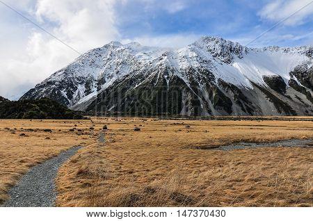 Hooker Track In Aoraki/mount Cook National Park, New Zealand