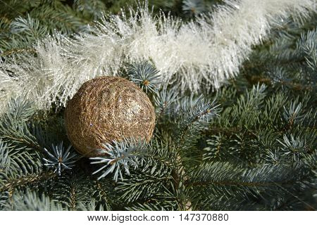 Christmas silvery fir-tree. On a fir-tree the gold sphere and festive tinsel are located