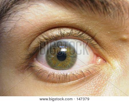 Macro Shot Of My Green Eye