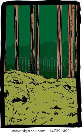Framed Postcard Of Forest With Trail In Sweden