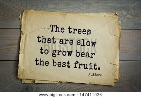 Moliere (French comedian) quote. The trees that are slow to grow bear the best fruit.