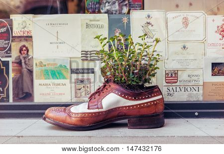 FLORENCE ITALY - JULY 12 2016: Old leather shoe as decorative flower pot in a background of vintage wine labels in Florence Italy