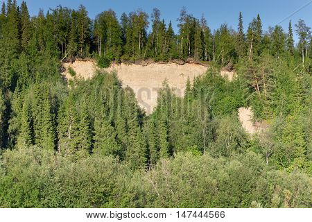 Sandy Breakage With Dense Forest