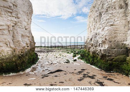 Popular White Cliffs Botany Bay La Manche English Channel Coast, Kent, England, United Kingdom