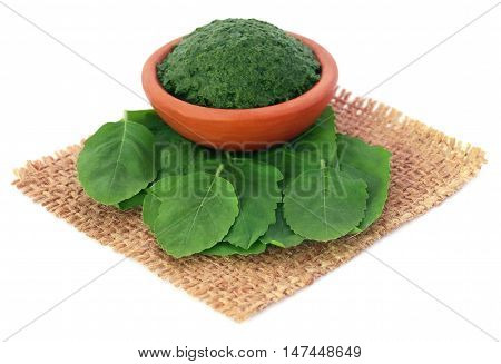 Medicinal holy basil or tulsi leaves with ground paste in a pottery poster