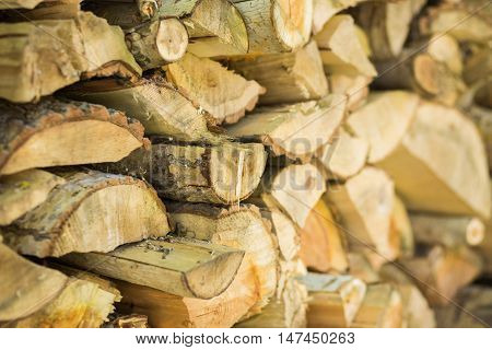 Log cabin texture. Barn natural debarked textured wall background with blur in the future