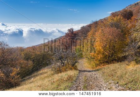 View from Babuhan Yaila natural reserve down to Black Sea in autumnal season when fog arises from the sea and goes to mountains when sun warms water.