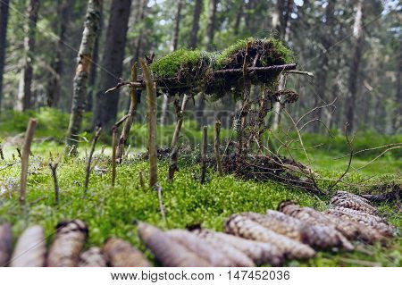 Wooden house for dwarf in forest - build by children - children playing in forest