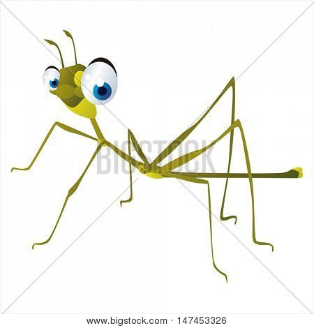 vector cartoon cute animal mascot. Funny colorful cool illustration of happy Stick insect