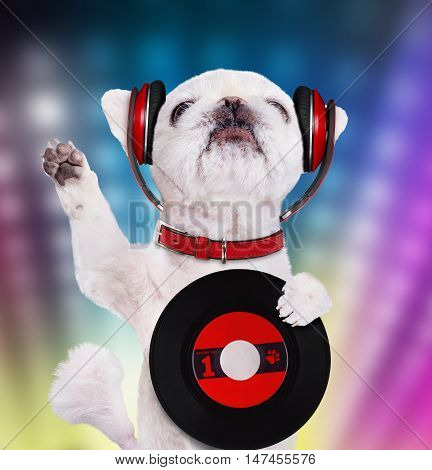 Music headphone vinyl record dog. Dog dj.