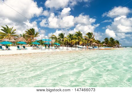 tropical summer vacation beach with sea or ocean water green palm trees and blue sky with people and umbrellas on sand coast sunny day outdoor at Costa Maya Mexico
