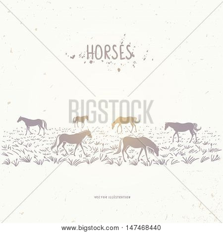 Beautiful silhouette herd horses in the field. Vector illustration