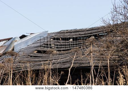 Old barn with a broken roof. Russian reality they live far from the capital
