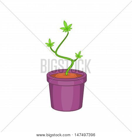 Marijuana or cannabis in flower pot icon in cartoon style isolated on white background vector illustration