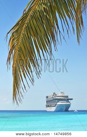 Palm tree and cruise ship in background - With selective focus