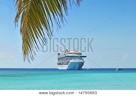 Palm tree and cruise ship in background in tropical island
