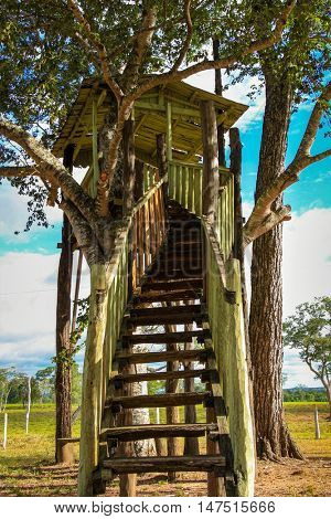 Farm in Pantanal, Brazil