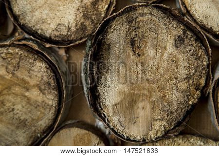 end of old logs, decor of wall, background