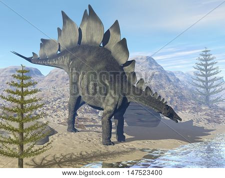 Stegosaurus dinosaur looking for water in the desert by day - 3D render