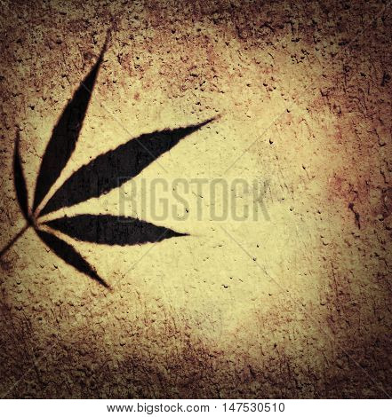 Brown and beige marijuana canabis ganja shadow of leaf on facade wall background