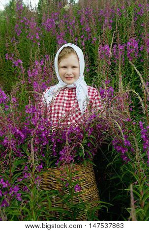 girl with a basket of flowers in the meadow