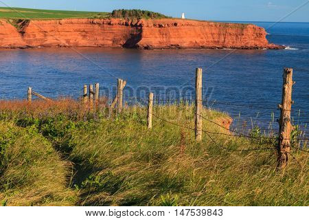 Cliffs on the north shore of Prince Edward Island with Cape Tryon lighthouse in the distance.