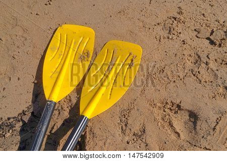 Yellow Oars On Sandy Beach With Black Handles For Rowing