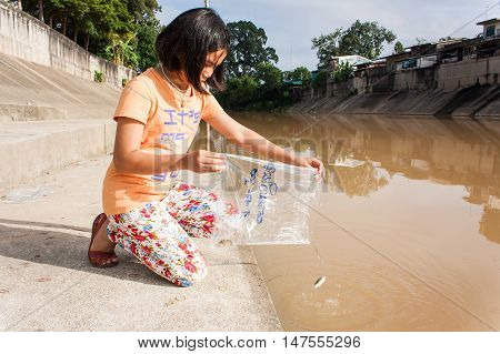 cute asian girl release fish into the canal