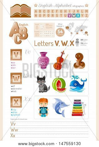 Vector illustration table. English alphabet ABC icon set in elegant style. Letter V, W, X infographics with toy block, symbol - vase, violin, viper, wolf, watermelon, whale, X-ray, xiphias, xylophone