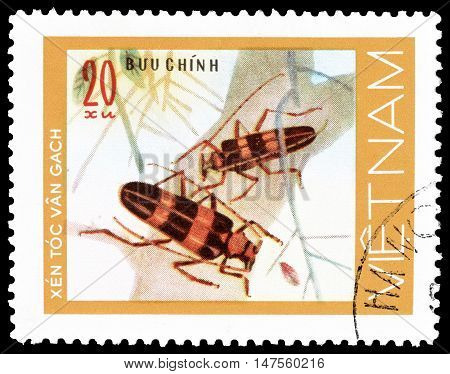 VIETNAM - CIRCA 1977 : Cancelled postage stamp printed by Vietnam, that shows beetles.