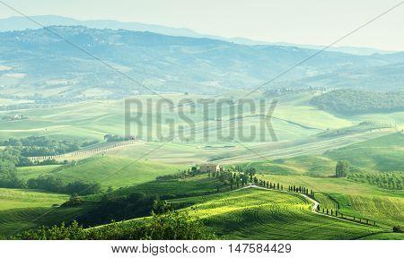 tuscany sprig landscape,  Italy