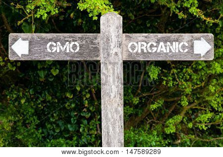 Gmo Versus Organic Directional Signs