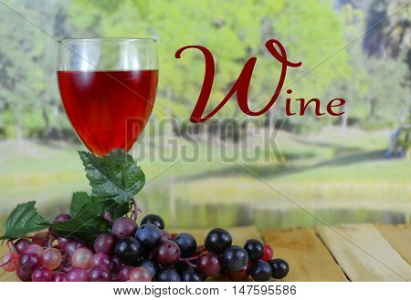 A glass of dark pink wine sitting on a wooden table with grapes with a blurred background of a tree lined lake in the sunshine. There are reflections from the lights and text has been added
