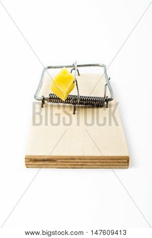 Mousetrap with cheese isolated on white background