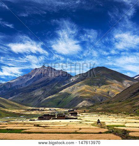Dho Tarap Village In Dolpo, Nepal