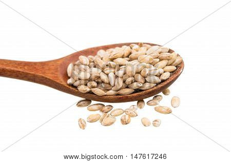 Pearl barley grains isolated on a white background